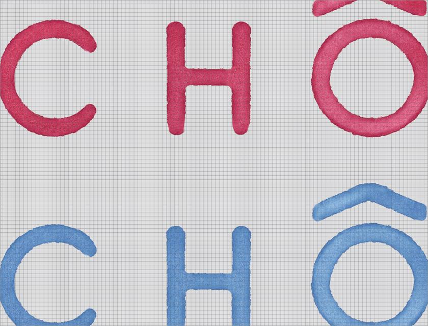 chomchom_identity_001