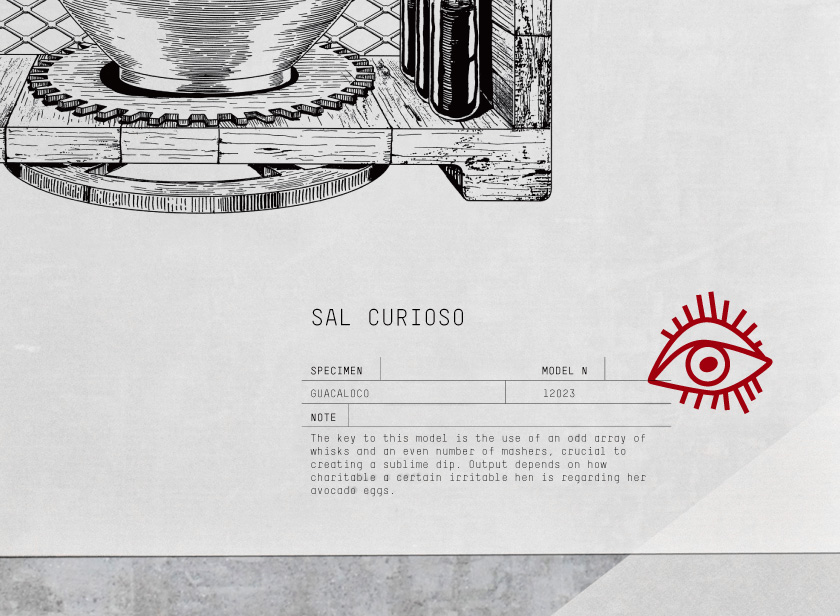 sal curioso_identity_02_b